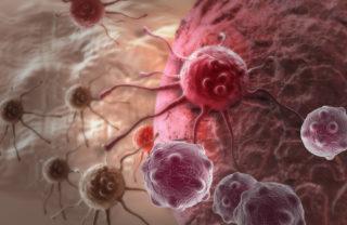 imunoterapia-tratamento