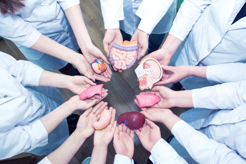 Doação-de-órgãos.jpg